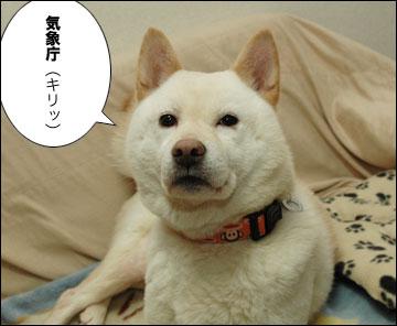 日本のことを考えるお役所-4コマ