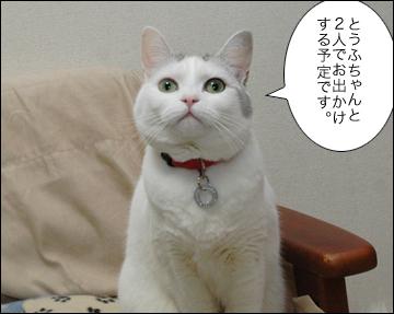 ジャパンペットフェアに行きます。-3コマ