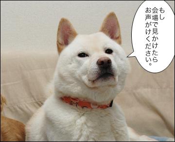 ジャパンペットフェアに行きます。-5コマ