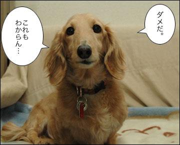 視力検査-8コマ
