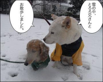 雪やこんこ-2コマ