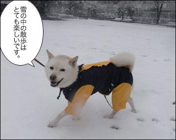 雪やこんこ-3コマ