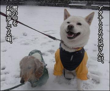 雪の日のニャンコ-1コマ