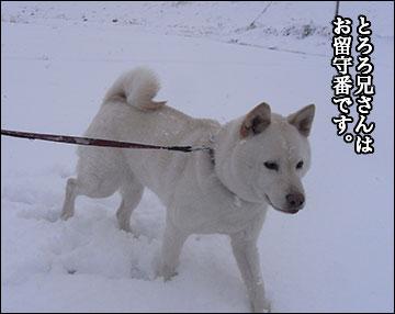 雪ふたたび-5コマ