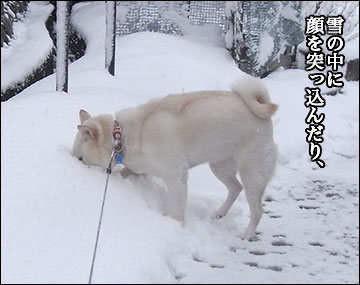 雪ふたたび-8コマ